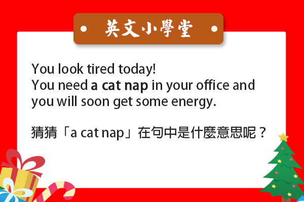 「a cat nap」?