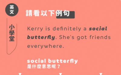 「social butterfly」?